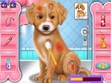Fasion Pet Doctor