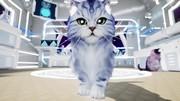 Kitten'd otvoril svet plný neposedných mačiek