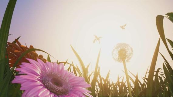 Microsoft k vydaniu Xbox One X ponúka techdemo Insects