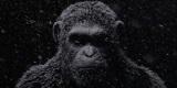 Planéta opíc dostáva herné spracovanie v titule Planet of the Apes: Last Frontier