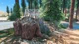 Zalesnite si prostredie GTA V s modom Forests of Chiliad