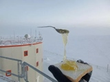 Keď si robíte chleba s medom v Antarktíde