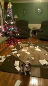 Vianočné nehody