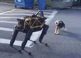 Pes v1.0  vs Pes v2.0