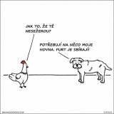Pes a sliepka