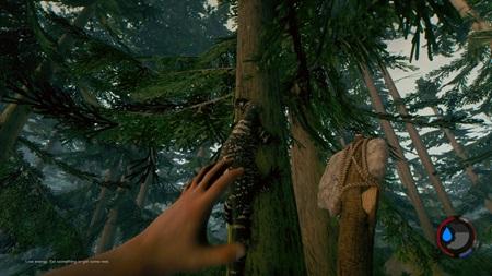 Autori The Forest chc� tento rok vyda� aj PS4 verziu