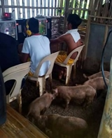 Hráči na filipínach
