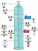 Svetové štandardy