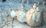 Snehuliaci...