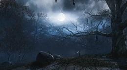 Amazon vydáva svoj herný engine postavený na Cryengine, volá sa Lumberyard a je zadarmo