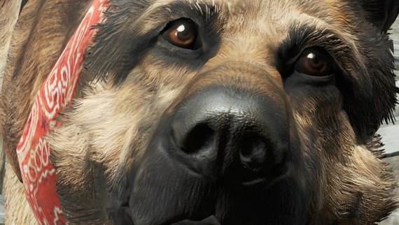 Zahrajte si Fallout 4 ako Dogmeat, skuto�n� hrdina hry
