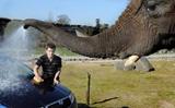 Načo umývať auto hadicou, keď máte slona!