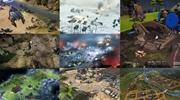 Aké zaujímavé strategické hry nás čakajú v roku 2017?